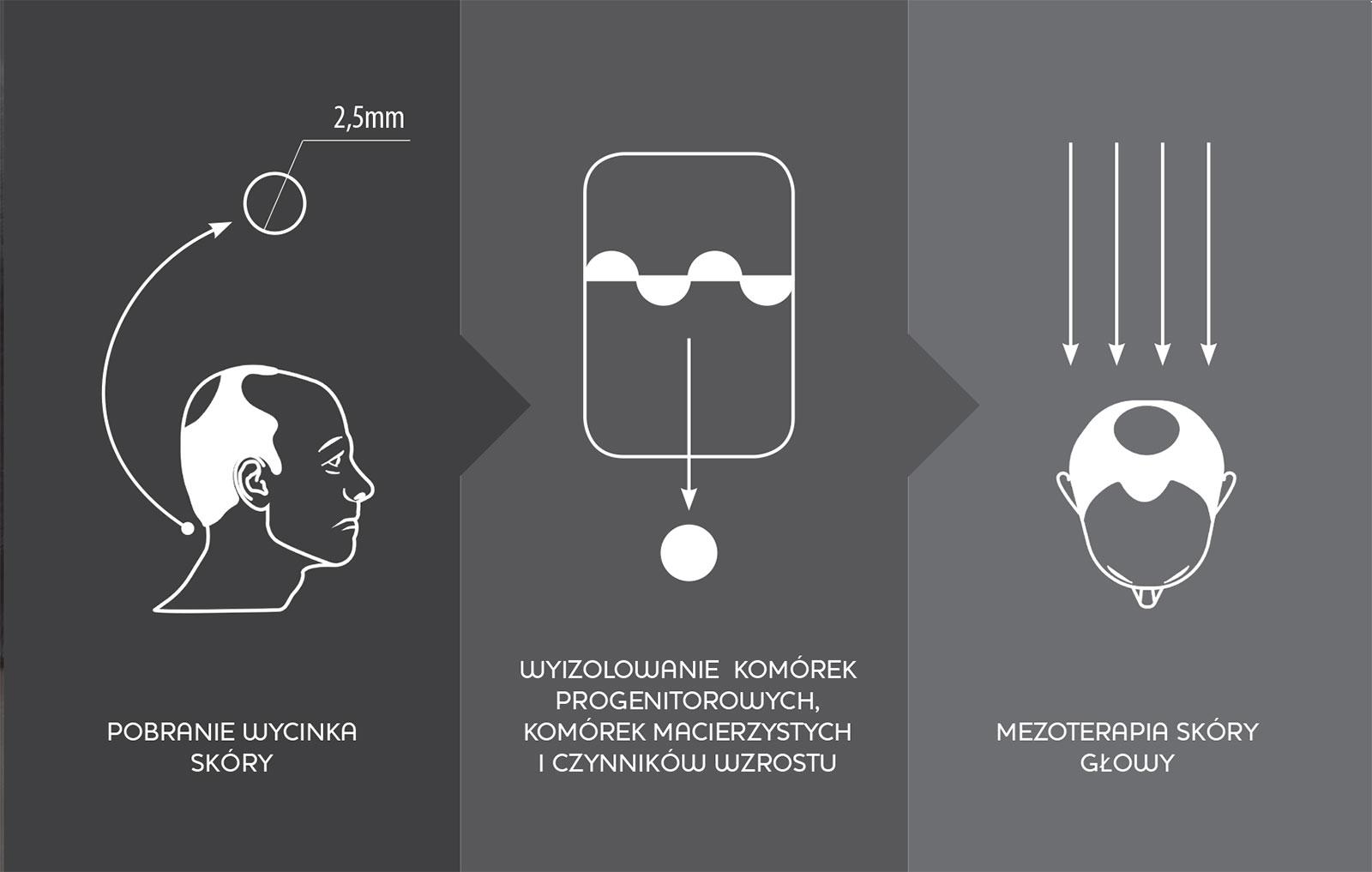 regenera activa z - WŁOSY - REGENERA ACTIVA