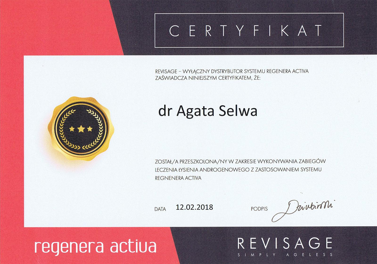 certyfikat revisage - O MNIE